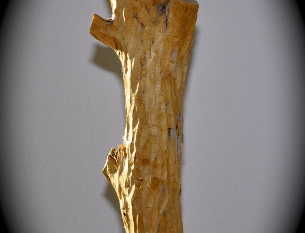 legno_bellinzona_scultura_1.jpg